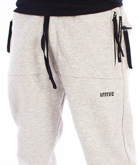 Intruz-Intruz Sweatpants Spodnie Dresowe Szare