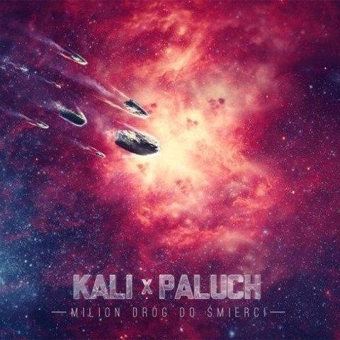 Kali x Paluch-Milion Dróg Do Śmierci CD