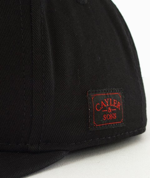 Cayler & Sons-WL Burnout Snapback Black
