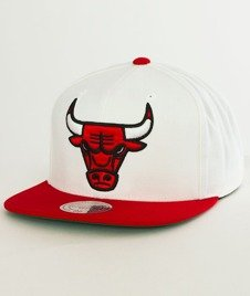 Mitchell & Ness-Chicago Bulls  XL Logo Two Tone NM04Z